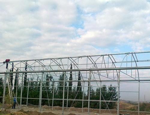 Devlet Üretme Çiftliği KIBRIS