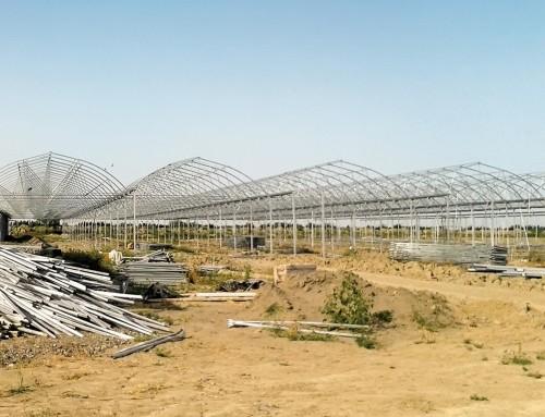 Topraklı Tarım Serası AZERBAYCAN
