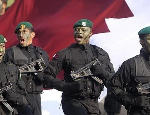 Katar ordusu, Türklerin yetiştirdiği sebzeyi tüketecek